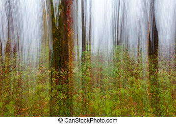 abstract motion blur of trees - abstract motion blur of...