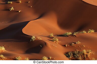 Abstract namib dunes