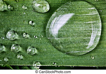 drops of dew on a close-up sheet