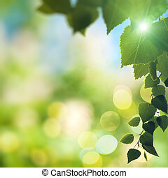 Abstract natural backgrounds with beauty bokeh