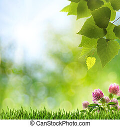 Abstract natural backgrounds with clover flowers and beauty ...