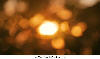 Abstract nature bokeh background. Sunset light, sun lens...