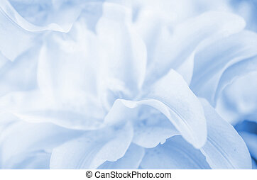 abstract nature flower background