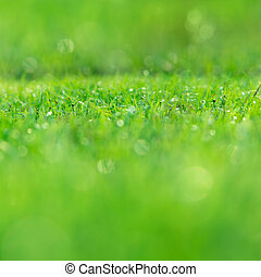 abstract, natuur, achtergrond, met, gras