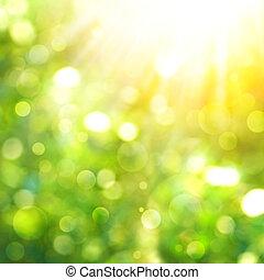 abstract, natuurlijke , achtergronden, met, zonnestraal, en,...
