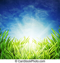 abstract, natuurlijke , achtergronden, onder, de, blauwe hemelen