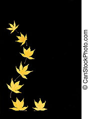 Abstract of Golden Leaves