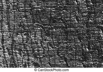 abstract of wood bark texture for background used