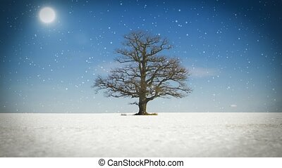 Abstract old tree on snowy field