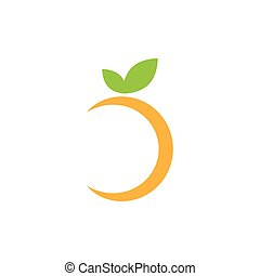 Abstract orange fruit graphic design template vector illustration