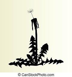 abstract, paardenbloem, achtergrond, vector, illustratie, lente