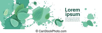 Abstract Paint Splash And Mint Leaf Set Over White...
