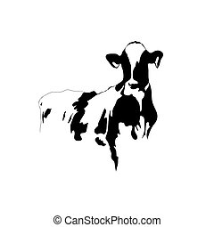 picture black and white cow