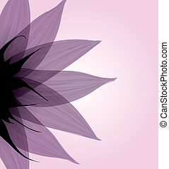 Abstract pink flower. Vector