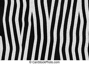 zebra texture