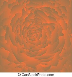 Abstract rose background