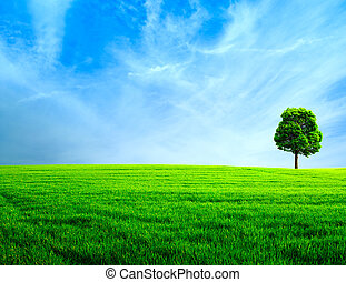 Abstract rural landscape