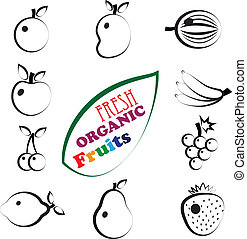 Abstract set of fresh, organic summer fruit icons represented in artistic way. The fruits include mango, apple, banana, orange, lemon, sweet lime, grapes, strawberry, pear, berries, watermelon, etc.