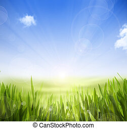 Abstract spring and summer background