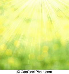 Abstract spring and summer background. Spring grass in sun ...