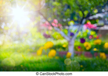 abstract spring background with fresh flower on spring garden