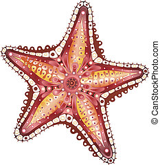 Illustration of abstract starfish isolated on white.