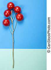 Abstract still life with tomato and branch on a colored background