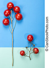 Abstract still life with tomatoes and branches.