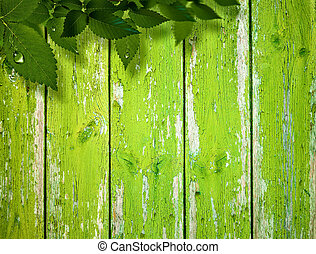 Abstract summer and spring backgrounds with foliage and wooden fence