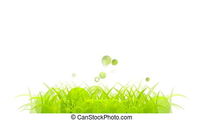 Abstract summer grass video animation