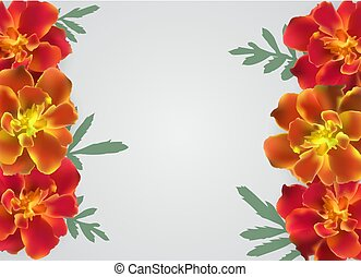 Abstract Tagetes Flower Realistic Vector Frame Background