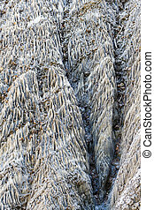 Abstract texture forms in a salt wall