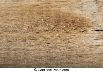 abstract texture of old wooden