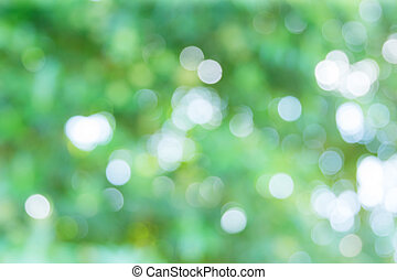 abstract unfocused green nature forrest fresh background