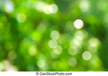 abstract, vaag, milieu, bokeh, achtergrond, groene achtergrond, concepten