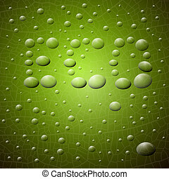 Abstract Vector Green Background. ECO Title Made from Water Drops On Glass.