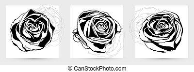 abstract, vector, rose., tekening, hand