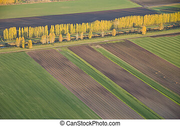 Abstract View of Agricultural Fields and Tree Line