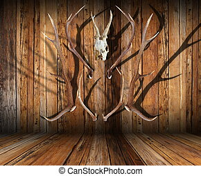 hunting trophies on wood - abstract view of hunting trophies...
