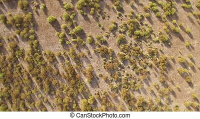 Abstract view of rock rose from the air, rotating camera -...