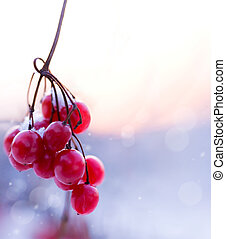 abstract winter background scene - branch of red ripe...