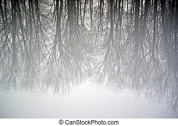 Abstract Winter Reflection 1