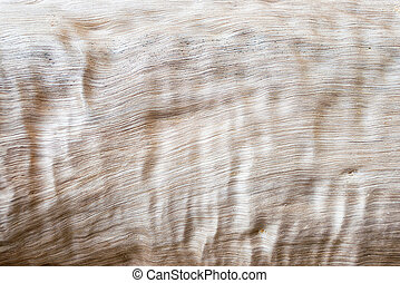 Abstract wood texture background