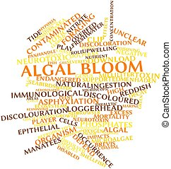Algal bloom - Abstract word cloud for Algal bloom with...