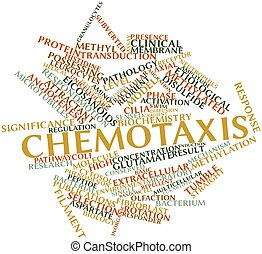 Chemotaxis - Abstract word cloud for Chemotaxis with related...
