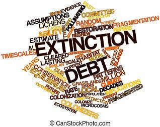 Extinction debt