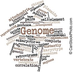 Genome - Abstract word cloud for Genome with related tags...