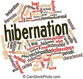 Abstract word cloud for Hibernation with related tags and terms