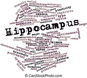 Hippocampus - Abstract word cloud for Hippocampus with...