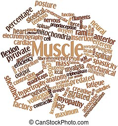 Muscle - Abstract word cloud for Muscle with related tags...